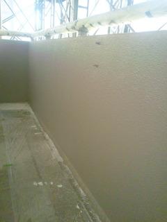 DVC00365Atou西2階上塗り完了完了1212.JPG
