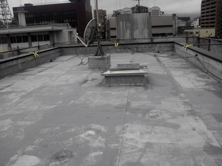DVC00098秋岡屋上洗浄完了123.JPG