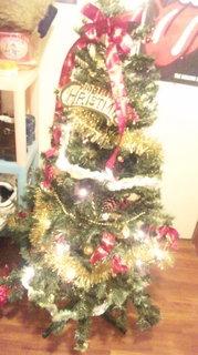 DVC00142染矢家クリスマスツリー1212.JPG